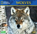 Cal 2019 National Geographic Wolves