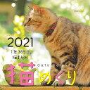 猫めくり(2021) ([カレンダー])