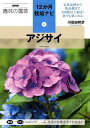 アジサイ (NHK趣味の園芸12か月栽培ナビ) [ 川原田邦彦 ]