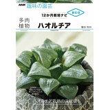 多肉植物ハオルチア (NHK趣味の園芸)