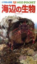 小学館の図鑑 NEO POCKET -ネオぽけっとー 海辺の生物