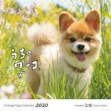 オレンジページ うちのワンコ。壁掛カレンダー ([カレンダー])