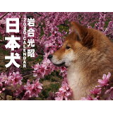 日本犬(2020) ([カレンダー])