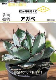 多肉植物 アガベ (NHK趣味の園芸12か月栽培ナビNEO) [ 鶴岡 秀明 ]