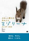ふわっと癒され北のリスエゾリーナカレンダー(卓上)(2018) ([カレンダー] 翔泳社カレンダー)
