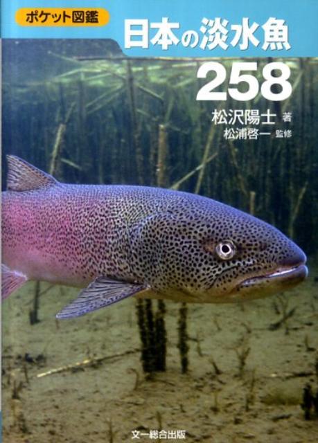 日本の淡水魚258 ポケット図鑑 [ 松沢陽士 ]
