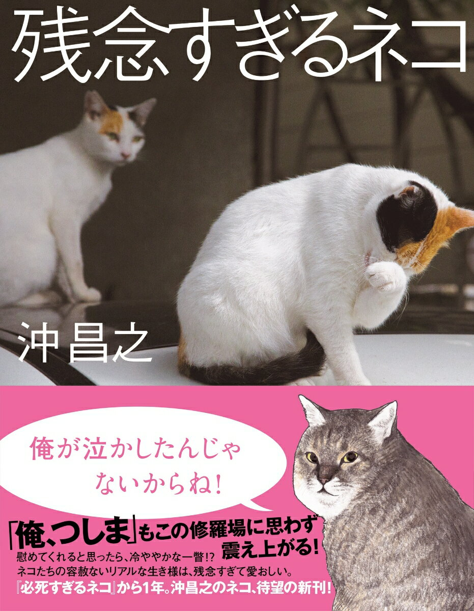 残念すぎるネコ [ 沖昌之 ]