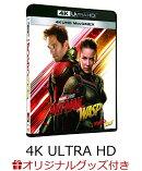 【楽天ブックス限定】アントマン&ワスプ 4K UHD MovieNEX【4K ULTRA HD】+コレクターズカード