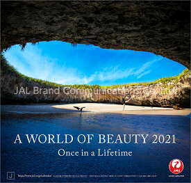 JAL「A WORLD OF BEAUTY」(普通判)(2021年1月始まりカレンダー)