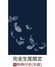 【先着特典】いつのまにか、ここにいる Documentary of 乃木坂 46 DVD コンプリート BOX(4枚組)(完全生産限定)(映画フィルム風しおり 1 枚付き) [ 乃木坂46 ]