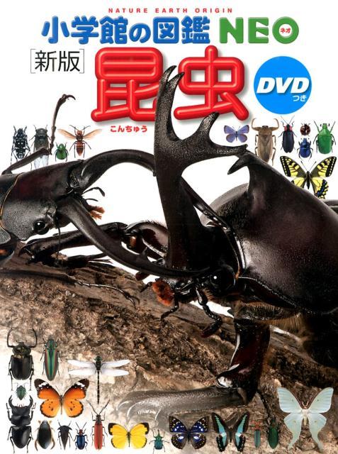 小学館の図鑑NEO〔新版〕 昆虫 DVDつき (小学館の図鑑 NEO) [ 小池 啓一 ]