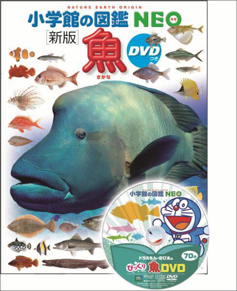 魚 新版 (小学館の図鑑NEO) [ 井田 齋 ]