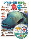 魚 新版 DVDつき (小学館の図鑑NEO) [ 井田 齋 ]