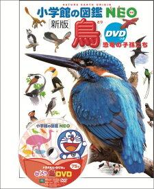 鳥 新版 DVDつき 恐竜の子孫たち (小学館の図鑑NEO) [ 上田 恵介 ]