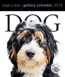 DOG GALLERY CALENDAR 2019(PAGE-A-DAY)