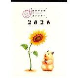 「助六の日常」カレンダー(2020) ([カレンダー])