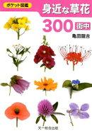 身近な草花300〈街中〉