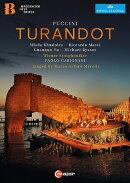 【輸入盤】『トゥーランドット』全曲 マレッリ演出、カリニャーニ&ウィーン響、フドレイ、マッシ、他(2015 ステ…