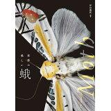 世界の美しい蛾