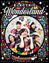 ももいろクリスマス2017 〜完全無欠のElectric Wonderland〜 LIVE Blu-ray(初回限定版)【Blu-ray】 [ ももいろクローバ...