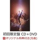 【9月2日(水)以降の発送】【楽天ブックス限定先着特典】Night Diver (初回限定盤 CD+DVD) (アクリルキーホルダー)