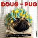 Doug the Pug Mini Wall Calendar