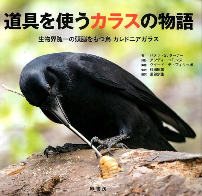 道具を使うカラスの物語 生物界随一の頭脳をもつ鳥カレドニアガラス [ パメラ・S.ターナー ]