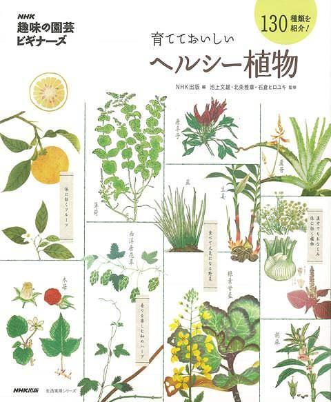 【バーゲン本】育てておいしいヘルシー植物 (NHK趣味の園芸ビギナーズ) [ NHK出版 編 ]