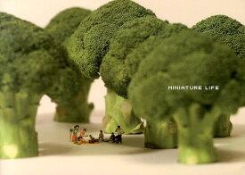 MINIATURE LIFE [ MiniatureCalendar ]