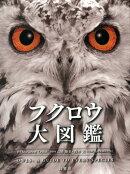 フクロウ大図鑑