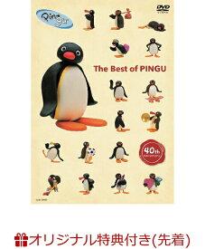 【楽天ブックス限定先着特典】ピングー40th Anniversary The Best of PINGU(コンパクトミラー)