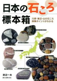 日本の石ころ標本箱 川原・海辺・山の石ころ採集ポイントがわかる [ 渡辺一夫(ライター) ]