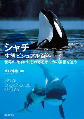 シャチ生態ビジュアル百科 世界の海洋に知られざるオルカの素顔を追う [ 水口博也 ]