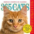 365 CATS CALENDAR 2019(PAGE-A-DAY)