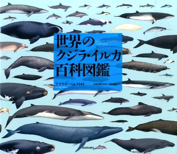 世界のクジラ・イルカ百科図鑑 [ アナリサ・ベルタ ]
