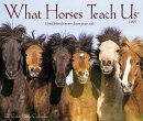 What Horses Teach Us 2019 Box Calendar