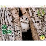 森の動物たち Tiny Story in the Forestsカレンダー ([カレンダー])