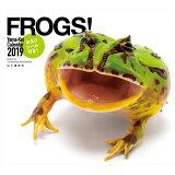FROGS!カレンダー(2019) ([カレンダー])