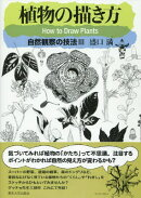 植物の描き方