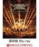 【早期予約特典+先着特典】10 BABYMETAL BUDOKAN(通常盤 Blu-ray)【Blu-ray】(ジャケットシート+ポストカード)