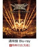 【先着特典】10 BABYMETAL BUDOKAN(通常盤 Blu-ray)【Blu-ray】(ポストカード)