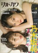 別冊カドカワDirecT 13