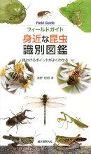 フィールドガイド身近な昆虫識別図鑑