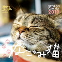 週めくりカレンダーなごみ猫(2019) ([カレンダー])