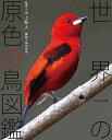 世界の原色の鳥図鑑 [ 川上和人 ]