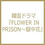 【輸入盤】韓国ドラマ『FLOWER IN PRISON〜獄中花』 [ TV Soundtrack ]