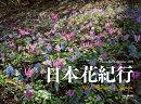 日本花紀行カレンダー(2019)