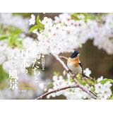 鳥たちと日本の美しい風景カレンダー ([カレンダー])