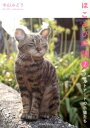 ほころびの時間(2) フェルトアートの子猫たち [ 中山みどり ]