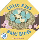 LITTLE EGGS,BABY BIRDS(H)